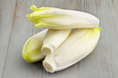 Belgian endives Stock Photos