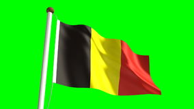 Belgian Flag stock footage