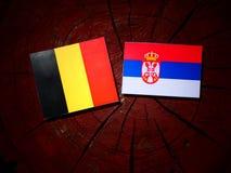 Belgian flag with Serbian flag on a tree stump isolated. Belgian flag with Serbian flag on a tree stump royalty free stock photos