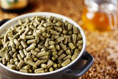 Belgian hops granulated in a clay dish. Spilled barley malt and beer mug in the background. Belgian hops granulated. Spilled barley malt in the background. Used royalty free stock photography