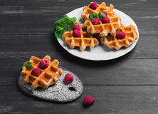 Belgian lush round waffles with fresh raspberries. Twigs and leaves mty in a white plate and ceramic board with lace pattern on dark wooden background, empty Royalty Free Stock Photo