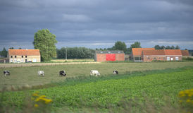Belgian pastoral view Stock Photo