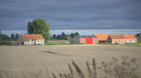 Belgian pastoral view Royalty Free Stock Photos