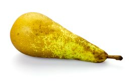 Belgian pear. Stock Photos