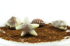 Belgian praline in the form of starfish Royalty Free Stock Photo