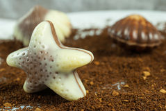 Belgian praline in the form of starfish Royalty Free Stock Images