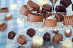 Belgian pralines chocolate Stock Photography
