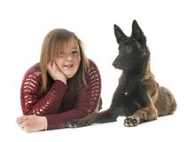 Belgian shepherd malinois and woman. In front of white background Stock Photos
