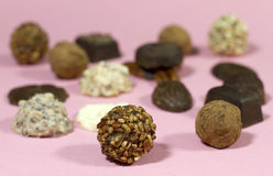 Belgian Truffle Chocolates Stock Photography