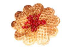 Belgian wafer Stock Image