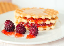 Belgian wafers. With berry jam on the white plate Royalty Free Stock Image
