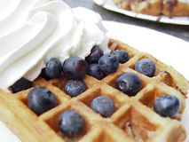 Belgian Waffle. A Belgian style waffle topped with blueberries and whipped cream Royalty Free Stock Photos