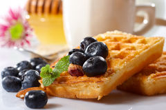 Belgian waffles. With fresh blueberries and nuts on white plate Royalty Free Stock Photography