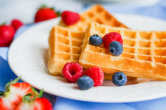 Belgian waffles with berries on rustic background Stock Image