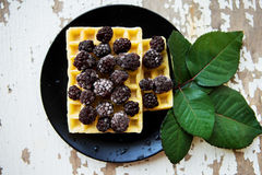 Belgian waffles with blackberries on a wooden background with green leaves Royalty Free Stock Images
