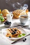 Belgian waffles for breakfast with a cup of coffee royalty free stock photography