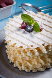 Belgian waffles with fresh berry. Belgian lush round waffles with fresh raspberries, twigs and leaves minty in plate Stock Images