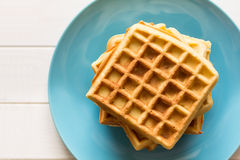 Belgian waffles with honey and cranberries Stock Photography