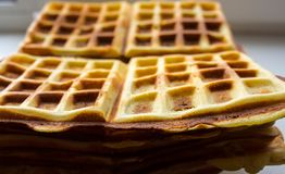 A Belgian waffles on a plate on a table Royalty Free Stock Image