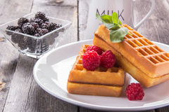 Belgian waffles with raspberries and mint for breakfast. Belgian waffles with raspberries and mint Stock Image