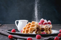 Belgian waffles with raspberries Royalty Free Stock Image