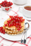 Belgian waffles with red currants on a plate, vertical Royalty Free Stock Photography