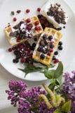 Belgian waffles series 06 Stock Photos