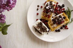 Belgian waffles series 08 Royalty Free Stock Photo