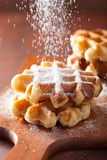Belgian waffles sprinkled with icing sugar Stock Photos