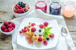 Belgian waffles with whipped cream and fresh berries Royalty Free Stock Photography