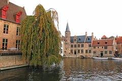 Belgien, Brügge, alte Häuser und Bäume auf dem Ufer lizenzfreie stockfotos