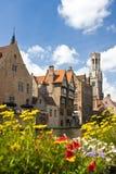 Belgien bruges kanal Royaltyfri Fotografi