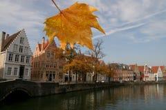 Belgien brugge fall arkivbilder