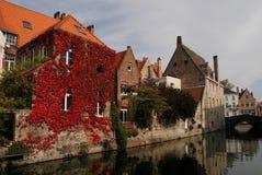 Belgien brugge fall royaltyfri bild