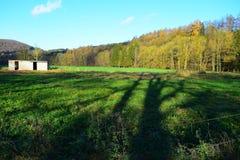 Belgien fält med den vita hyddan Arkivfoto