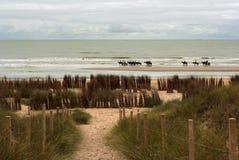 Belgien kust Arkivfoto