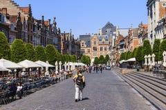 Belgien leuven Arkivbild