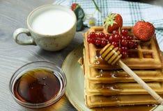 Belgijscy gofry z miodowymi i świeżymi jagodami Zdjęcie Stock