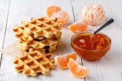 Belgijscy opłatki z jagodami i lody w talerzu obrazy stock