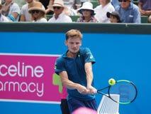 Belgijski gracz w tenisa David Goffin narządzanie dla australianu open przy Kooyong Zdjęcia Stock