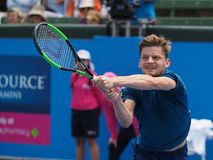 Belgijski gracz w tenisa David Goffin narządzanie dla australianu open przy Kooyong Klasycznym Powystawowym turniejem Zdjęcie Royalty Free