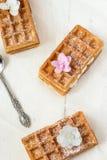 Belgische die wafels, met suikerglazuur worden bestrooid, roze bloemen Royalty-vrije Stock Foto
