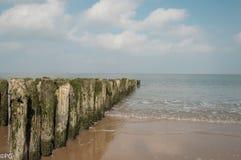 Belgische kust Royalty-vrije Stock Fotografie