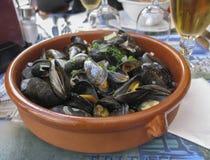 Belgische lunch: gestoomd mosselen en bier royalty-vrije stock foto's