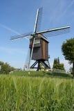 Belgische windmolen Stock Afbeeldingen