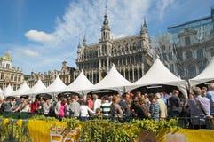 Belgisk ölhelg Fotografering för Bildbyråer