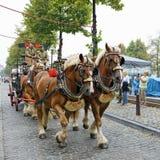 Belgisk ölhelg 2014, Bryssel Royaltyfria Bilder