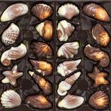 Belgisk chokladbränd mandeluppsättning i ask arkivbilder