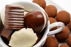belgiska choklader royaltyfri foto