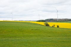 Belgium fields with rapeseed and wind turbines Stock Images